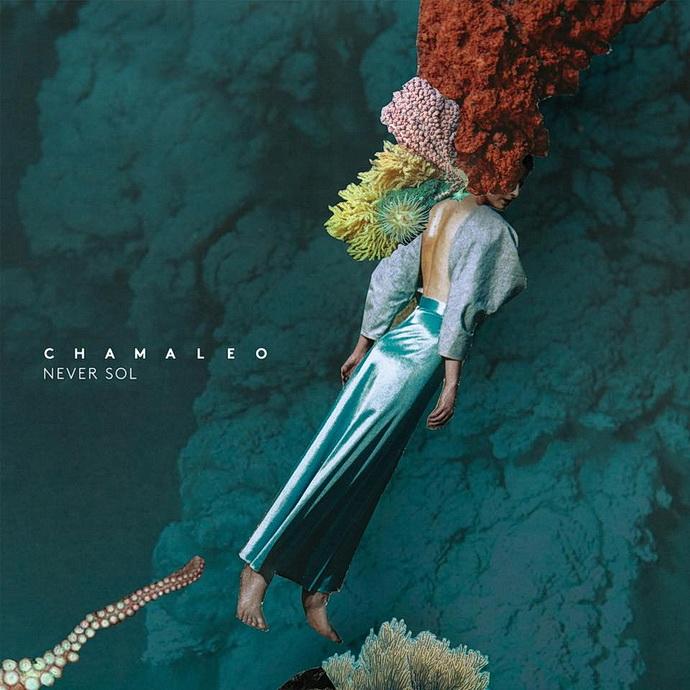 Přebal alba Chamaleo