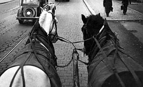 V. Chochola: Pošťácké koně
