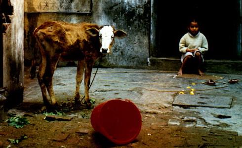 Cesta do Indie: Úžas