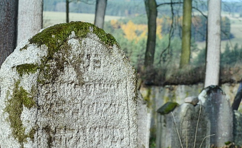 Ryté linky telických náhrobků
